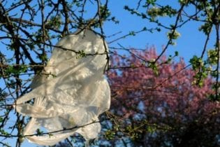 Plastic bag waste